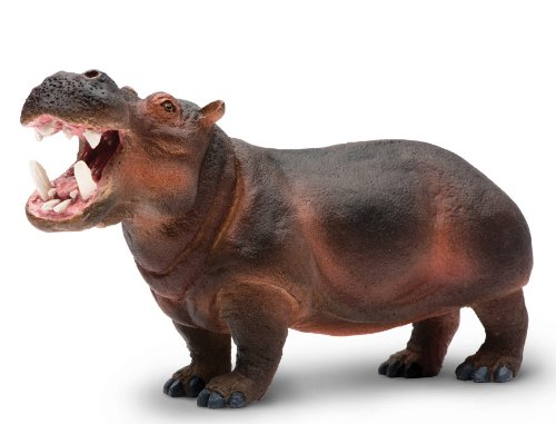 Safari Ltd Wildlife Wonders - Hippopotamus - Realistic Hand Painted Toy Figurine Model - Quality Construction from Safe and BPA Free Materials - For Ages 3 and Up - Large