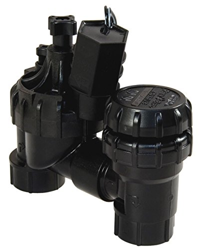 "Rain Bird Jtvas075 - 3/4"" Jar Top Anti-Siphon Valve"