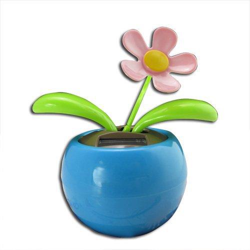 toogoor-blue-magic-cute-flip-flap-swing-dancing-solar-powered-flower-toys