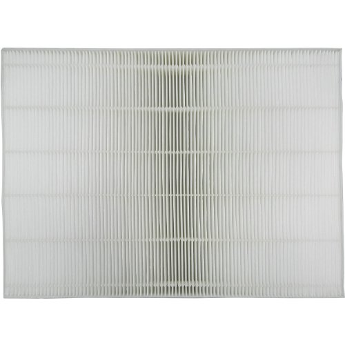 Sharp True HEPA Replacement Filter For FZ-A60HFU (Sharp Hepa Filter compare prices)