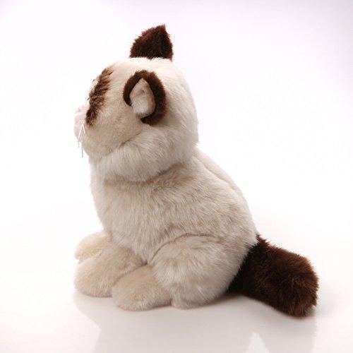 gund不爽猫可爱猫咪毛绒玩具约23cm gund grumpy cat