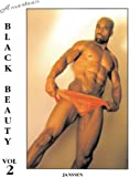 img - for American Black Beauty: Vol. 2 book / textbook / text book