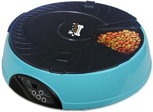 Qpets 6-Meal Automatic Pet Feeder