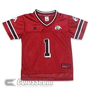 Fresno State Bulldogs Toddler Charger Football Jersey by SportShack INC