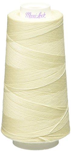 american-efird-maxi-lock-multiuso-confezione-da-4-pakage-colore-guscio-duovo