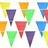Multi-Color 100 Ft Pennant Stringer w/48 Large Flags by Pudgy Pedros Party Supplies