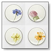 Colorwave Chocolate Floral Appetizer Plate (Set of 4)
