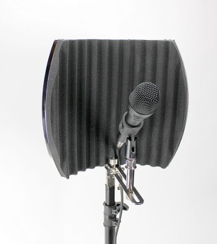 Post Audio D-Oneeleven Dynamic Mic With Arf-12 Vocal Booth