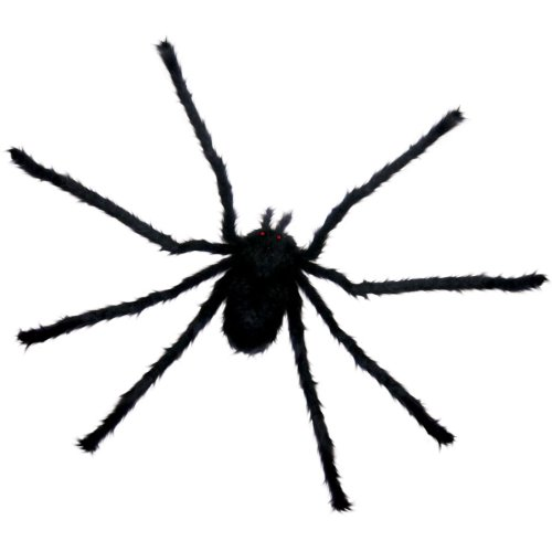 Sunstar Industries Small Black Spider Multicoloured One Size
