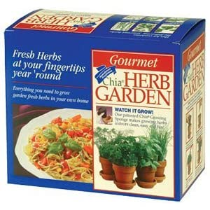 Chia Terra Cotta Herb Garden, 1 Kit