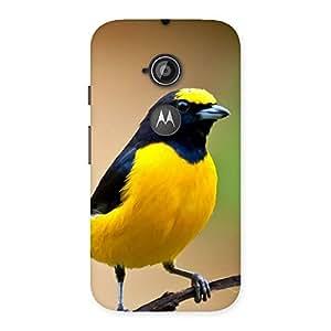 Premium Sweet Bird Back Case Cover for Moto E 2nd Gen