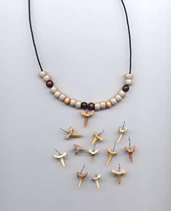 Amazon.com: Make-Your-Own Fossil Shark Tooth Necklace Kits ...