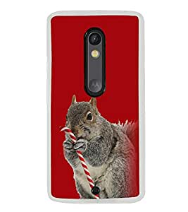 Cute Squirrel 2D Hard Polycarbonate Designer Back Case Cover for Motorola Moto X Play