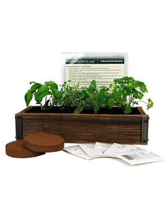 Reclaimed Barnwood Planter Box Mini Herb Garden Kit - Grow Cooking Herbs from Seed: Basil, Dill, Thyme, Parsley, Oregano, Cilantro (Herb Garden Window compare prices)