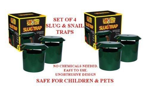 set-of-4-garden-slug-snail-beer-traps-no-chemicals-needed-child-pet-safe