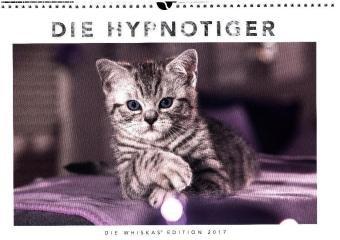 die-hypnotiger-whiskas-katzenkalender-2017-wandkalender-45-cm-x-30-cm