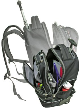 Traveler's Choice laptop backpack