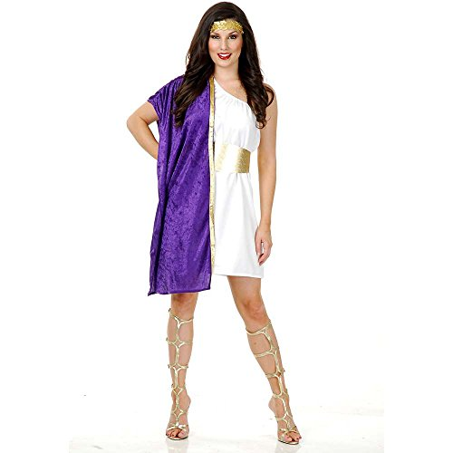 Charades Women's Greek Toga Costume