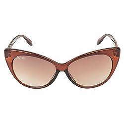 Chevera Voguish Cat-Eye Brown Sunglasses