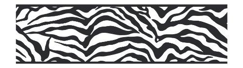 York Wallcoverings Friends Forever Je3672B Girly Glam Zebra Pre-Pasted Wallpaper Border, Black front-298370