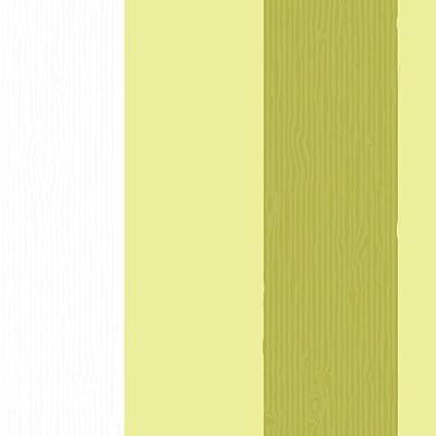 Faux Striped Wood Effect Wallpaper In Green White Full Roll