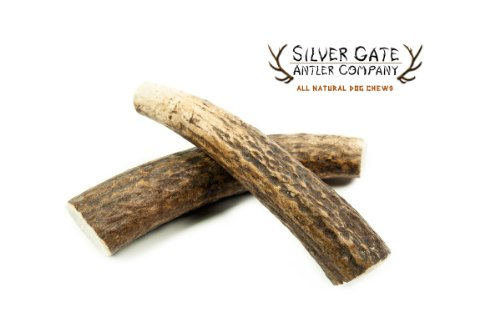 "Silver Gate Antlers Elk Antler Dog Chews *2 Pack* - Medium 4-5"", All Natural Premium Antler Dog Chew - Free Shipping - Made In Usa! Holistic & Hypoallergenic Chew Treat Toy - Perfect For Small To Medium Dogs"