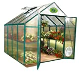 Search : STC Backyard Hobby Greenhouse, Green, 8 Feet by 8 Feet, EG45808