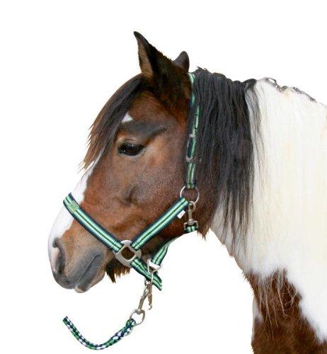 Kerbl Halfter Ponyteam Gr. 0 hellgrün/schwarz