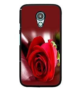 PrintDhaba Red Rose D-1143 Back Case Cover for MOTOROLA MOTO G2 (Multi-Coloured)