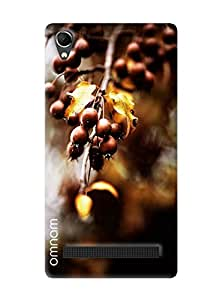 Omnam Brown Fruit On Tree With Yellow Leaves Printed Designer Back Cover Case For Intex Aqua Power Plus