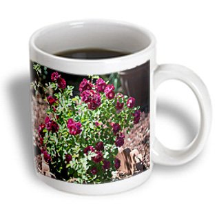 Jos Fauxtographee Realistic - A Dark Pink, Flowery Bush Surrounded By Cement Border On Pebbles In Utah - 15Oz Mug (Mug_52002_2)