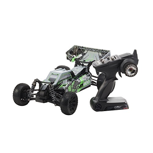 110-EP-4WD-Racing-Buggy-rs-Dirt-Hog-Type-2