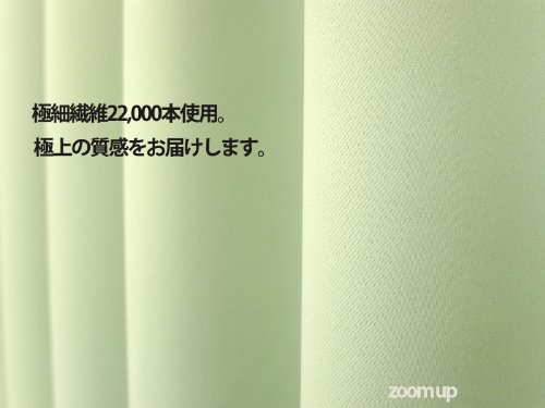 お得な厚地カーテンとレースカーテンのセット 1級遮光機能付き 「ベリーSET」 A4110-ベリー-グリーン 幅100x丈135cm 4枚組