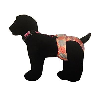 Barkerwear Dog Diaper Suspender - Floral Adjustable Suspender to Keep Dog Diapers On