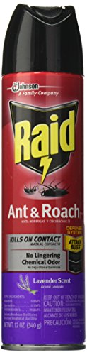 Raid Ant and Roach Killer, Lavender Scent, 12.0 Ounce (Roach Spray compare prices)
