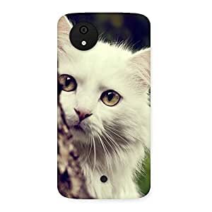 Delighted Cat Hide Back Case Cover for Micromax Canvas A1