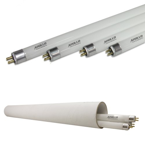 Apollo Horticulture 2 Ft 6400K T5 Fluorescent Grow Light Bulbs - Pack Of 4