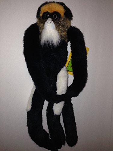 WILD REPUBLIC - Dada the De Brazza's Hanging Monkey - 1