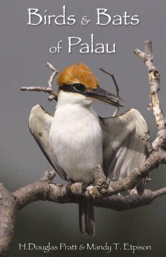 Birds and Bats of Palau