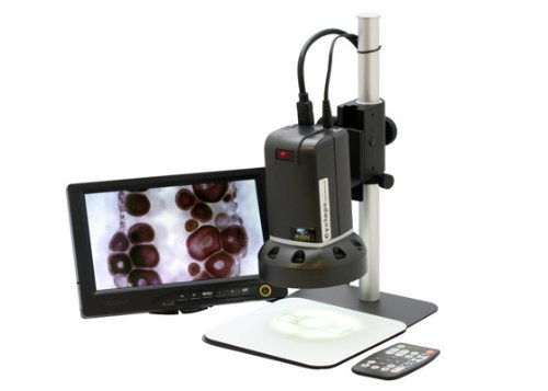 Aven 26700-400 Cyclops Digital Microscope With Stand And Remote, Gray