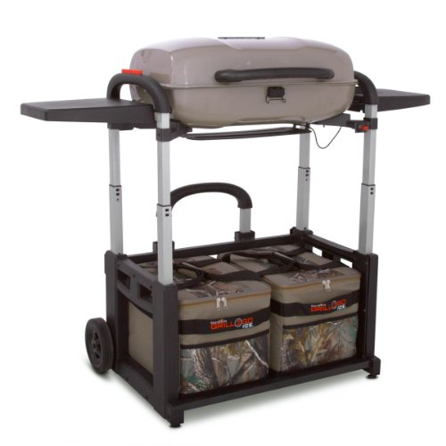 3#B2Check Cheap Price Char-Broil Grill 2 Go Ice Real Tree