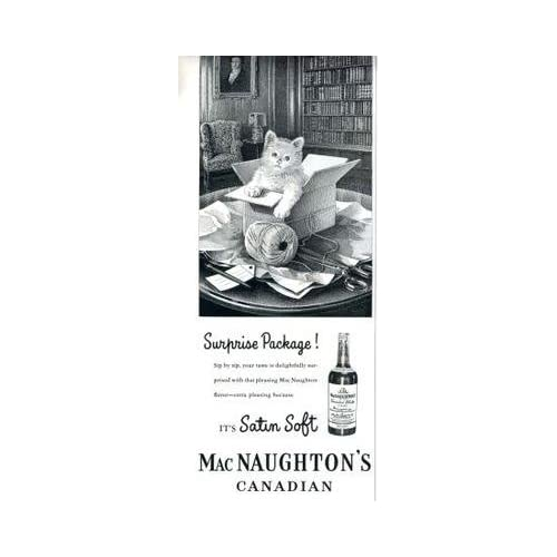 MacNaughtons Canadian Whisky Magazine Ad Kitten