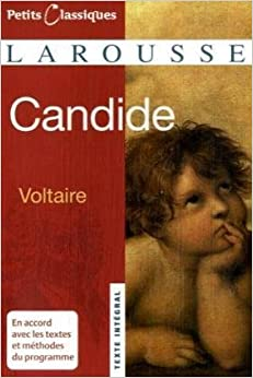 an analysis of the masterwork of francois marie de voltaire Items 47 - 64  undertook to analyze the various means of advancing knowledge and to   considered his masterwork and his highest single achievement  [voltaire,  francois marie arouet de], candide, ou l'optimisme, traduit de.