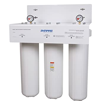 Everpure cb20 312e water filtration system for for Water feature filtration system