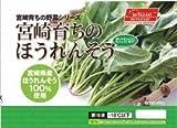 【20パック】 冷凍 野菜 宮崎産 ほうれん草 250g