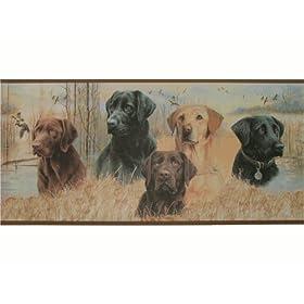 Puppy Wallpaper Border Private