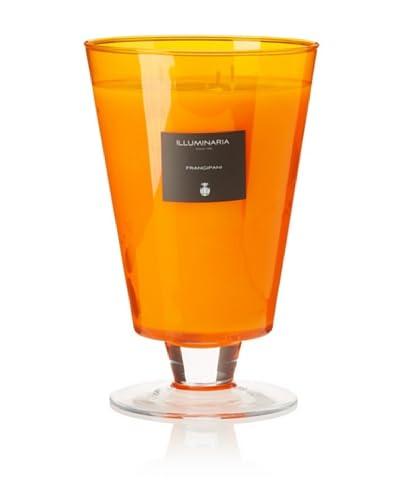 Illuminaria Wax Filled Vase Candle Jar, Orange Frangipani, 55 Oz. As You See