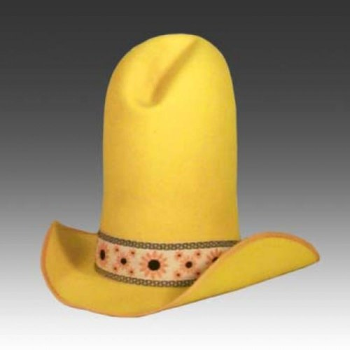 OMG, Shield your eyes, it's a SKY WEENIE!!!! - Pennock's ... 10 Gallon Cowboy Hat Front