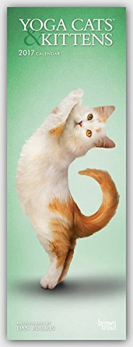 Yoga Cats & Kittens 2017: Original BrownTrout-Kalender - Slimline [Mehrsprachig] [Kalender] (Slimline-Kalender)