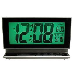 Elgin 2-Inch LCD Multifunction Display Alarm with Smartlite